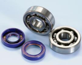Polini kit roulements/joints vilebrequin AM6 moteur