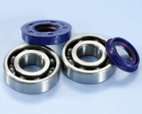 Polini crankshaft bearing kit incl. joints minarelli Hor/Vert.