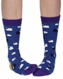 Doris & Dude sokken - Donkerblauwe schapen