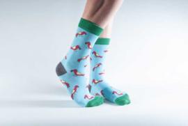 Doris & Dude sokken - papegaaien