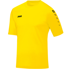 Shirt Team KM geel  (kids, dames, heren)