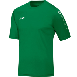 Shirt Team KM sportgroen  (kids, dames, heren)