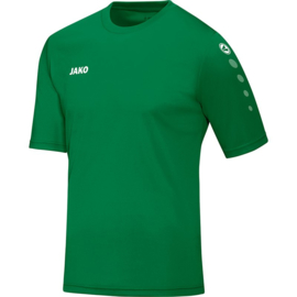 Shirt Team KM sportgroen
