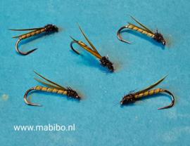 Winged buzzer #14