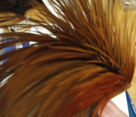 Metz dry fly neck brown