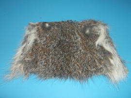 Squirrel skin