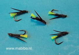 Fluotag wetfly.
