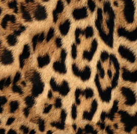 Stair stickers LEOPARD