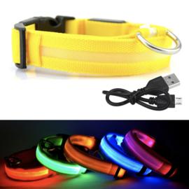 LED Huisdieren Halsband
