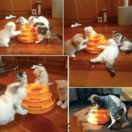 Spiraal Speel Toren Voor Katten
