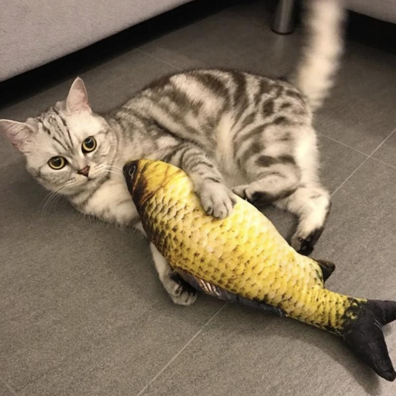 Speelgoedvis met Kattenkruid