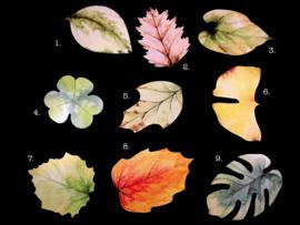 Kaarten met blad vormen