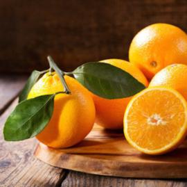Sinaasappel (zwarte thee)