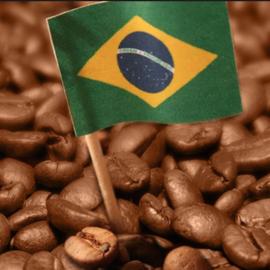 Brasil Cerrado