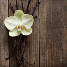 Vanille (zwarte thee)