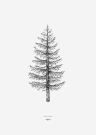 Kaart | dennenboom | inkylines