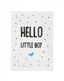 Bloeikaart | Hello little boy | Kekootje