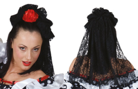 Hairclip  With Lace Veil