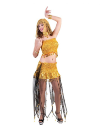 Belly Dancer top skirt neckpiece one size