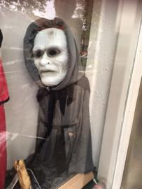 Halloween  4 tot 6 jaar zonder masker