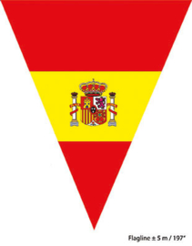 Vlaggenlijn spain plus minus 5 meter 10 flags