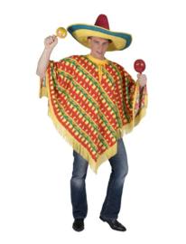 Fiesta poncho one size
