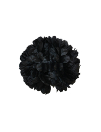 Hairclip zwart