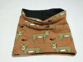 Buff Cheetah Eva Mouton