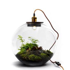 Terrarium met lamp - DEMETER