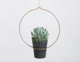 Plantenhanger Circula antiek goud