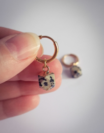 Hoops dalmatian hexagon  - goud