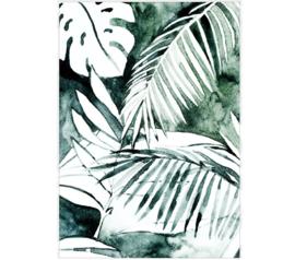 A3 (botanisch & natuur)