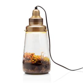 ecosysteem lamp Pickels - Spruitje