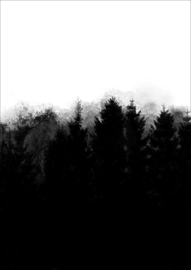 Helianthe's Kaartenhuis - print donkere bomen 1