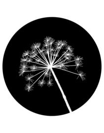 muurcirkel berenklauw - zwart - 40 cm