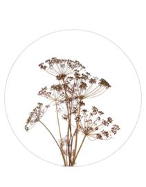 muurcirkel foto droogbloemen- 30 cm
