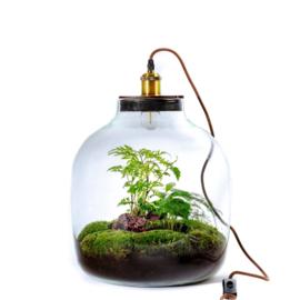 Terrarium met lamp - HEBE