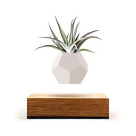 zwevend plantenpotje - LYFE by FLYTE