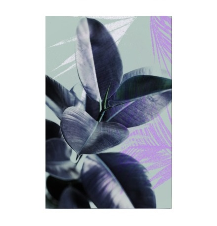 AW poster A3 - tropicana