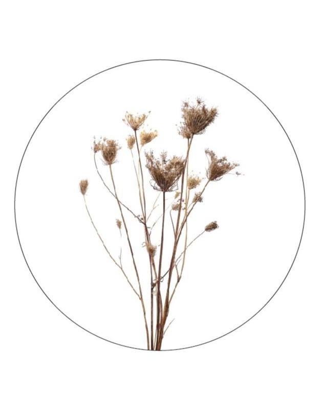 muurcirkel gedroogde bloemen - 30 cm