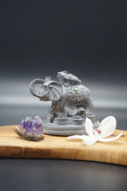 Lucky elephant with frog