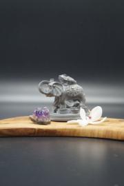 geluksolifant met kikker