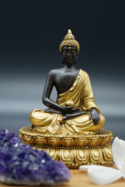 Buddha sitting on lotus in black and gold
