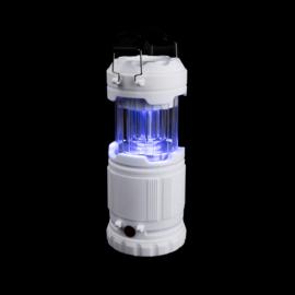 Z-Bug Lantern