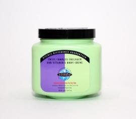 Clear Essence Swiss Collagen Body Cream 19oz.