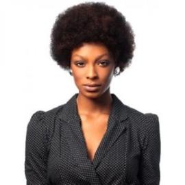 Sleek Synthetic Hair Big Afro Wig