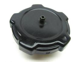 13 Fuel Cap