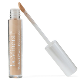 Perfect Cover Concealer Fair