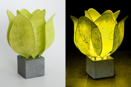 Tulp Lamp - kleur (colour): citroen groen/lime green