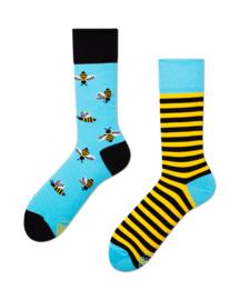 Bee Bee (Hoog) | Many Mornings